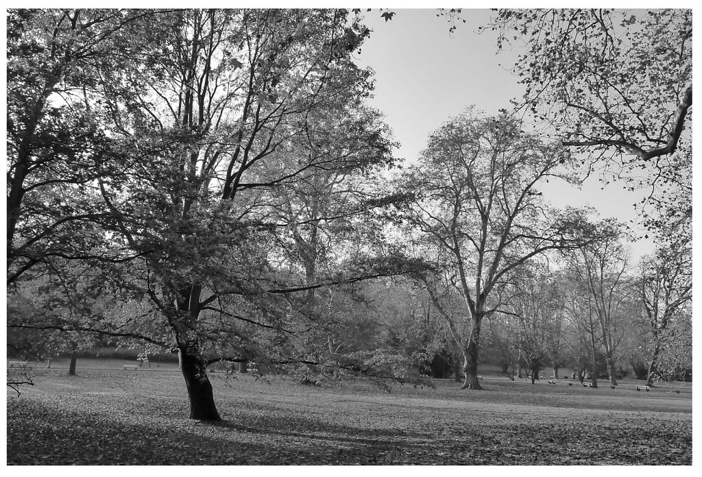 Kurpark, Wiesbaden, 2012